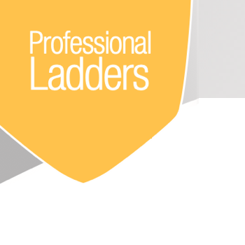 Professional Ladders